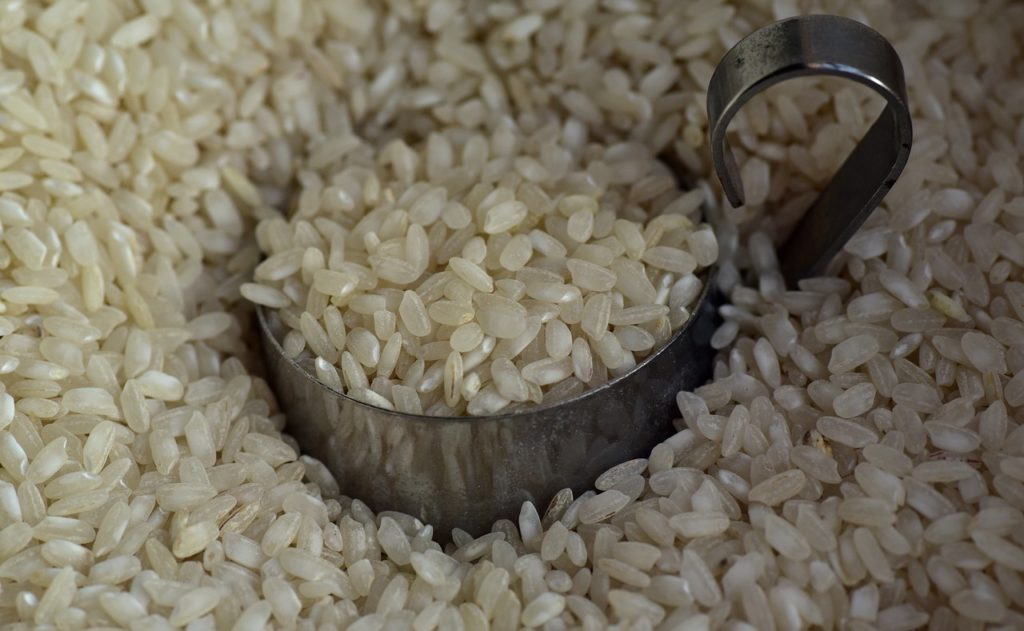 Rice Rice Grains Food Eat  - ulleo / Pixabay